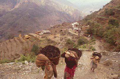 Aerial Ropeways Nepal p01a.jpg