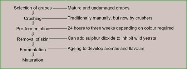 Grapewine02.jpg