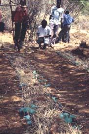 Micro Irrigation01.jpg